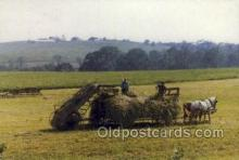 far001325 - Haying in the Sun Farming Old Vintage Antique Postcard Post Card