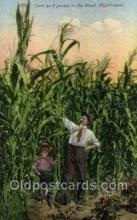 far001356 - Corn, Great Northwest Farming Old Vintage Antique Postcard Post Card
