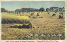 far001379 - Winter Wheat Country Farming Postcard Post Card