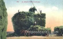 far001383 - Alfaifa Crop Farming Postcard Post Card