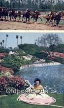 far001473 - Hollywood Park, Lakes & Flowers Farming Postcard Post Card
