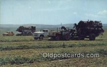 far001479 - Pea Harvest Farming Postcard Post Card