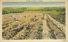 far001483 - Picking Potatoes Farming Postcard Post Card
