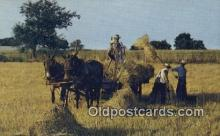 far001491 - Golden Harvest Time Farming Postcard Post Card