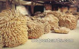 Tobacco Warehouses