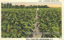 far001556 - Southern Tobacco Field Farming Postcard Post Card