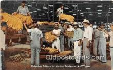 Unloading Tobacco for Auction