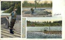 fis001026 - Fishing Postcard Post Card