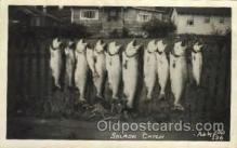 fis001033 - Fishing Postcard Post Card