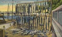 fis001047 - Fishing Postcard Post Card