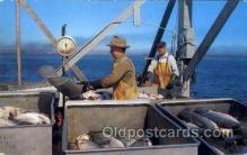 fis001092 - Northwest, unloading Salmon, Fishing Postcard Post Card