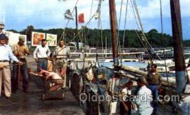 fis001099 - Panama City, Florida, USA, Fishing Postcard Post Card