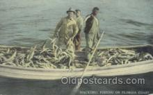 fis001175 - Florida USA CoastMackeral Fishing on Florida USA Coast, Fishing Postcard Post Card