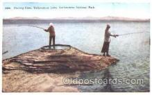 fis001208 - Yellowstone Lake, National Park, Fishing Postcard Post Card