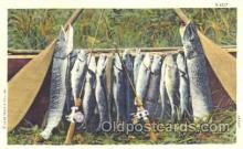 fis001217 - Fishing Postcard Post Card
