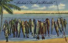 fis001283 - Florida USA Fishing Old Vintage Antique Postcard Post Card