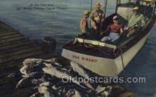 fis001284 - Florida USA Fishing Old Vintage Antique Postcard Post Card