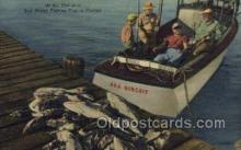 fis001290 - Florida USA Fishing Old Vintage Antique Postcard Post Card