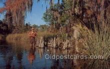 fis001294 - Suwannee River, Florida USA Fishing Old Vintage Antique Postcard Post Card
