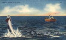 fis001297 - Tarpon Fishing, Florida USA Fishing Old Vintage Antique Postcard Post Card