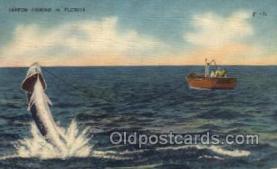 fis001301 - Tarpon Fishing, Florida USA Fishing Old Vintage Antique Postcard Post Card