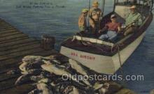 fis001302 - Florda USA Fishing Old Vintage Antique Postcard Post Card