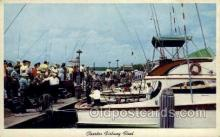 fis001316 - Florida, USA Fishing Old Vintage Antique Postcard Post Card