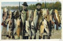 fis001320 - Fine Catch in Florida, USA Fishing Old Vintage Antique Postcard Post Card