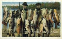 fis001321 - Fine Catch in Florida, USA Fishing Old Vintage Antique Postcard Post Card