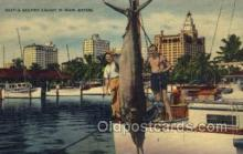fis001346 - Miami, FL USA Fishing Old Vintage Antique Postcard Post Card