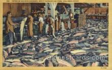 fis001350 - Columbia River Fishing Old Vintage Antique Postcard Post Card