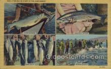 fis001351 - Fishing Northwest Fishing Old Vintage Antique Postcard Post Card