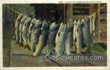 fis001405 - Mountain Trout Fishing Old Vintage Antique Postcard Post Card