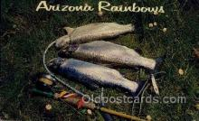fis001487 - Arizona Rainbows Fishing Old Vintage Antique Postcard Post Card