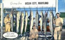 fis001506 - Ocean City Maryland, USA Fishing Old Vintage Antique Postcard Post Card