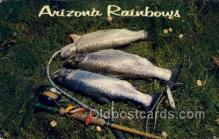 fis001508 - Arizona Rainbows Fishing Old Vintage Antique Postcard Post Card
