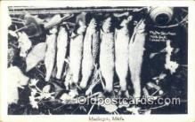 fis001524 - Muskegon, Michigan, USA Fishing Postcard Printed Photo Post Card Old Vintage Antique