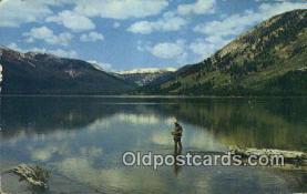 fis001557 - Alturas Lake, ID, USA Postcard Post Cards Old Vintage Antique