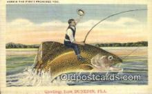 fis001581 - Dunedin, FL, USA Postcard Post Cards Old Vintage Antique