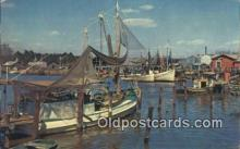 fis001590 - Fishing Fleet  Postcard Post Cards Old Vintage Antique