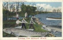fis001592 - Bethany Beach, USA Postcard Post Cards Old Vintage Antique