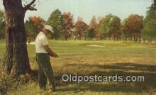 fis001608 - Golfing Bonne Terre, MI, USA Postcard Post Cards Old Vintage Antique