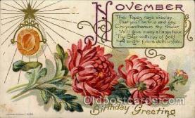Birthday November