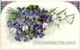 flr001063 - Flower Postcard Post Card