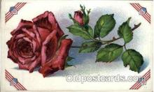 flr001064 - Flower Postcard Post Card