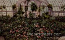 interior, Horticultural Building, Detroit, Mich, Michigan, USA