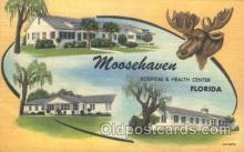 fra500012 - Moosehaven Hospital & Health Center, Florida, USA Fraternal Moose Club, Postcard Post Card