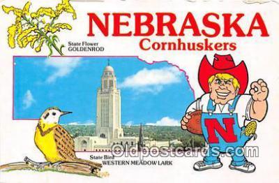 gre000139 - Nebraska, USA Postcards Post Cards Old Vintage Antique