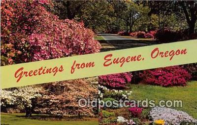 gre000194 - Eugene Oregon, USA Postcards Post Cards Old Vintage Antique