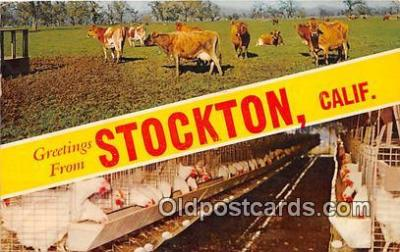 gre000201 - Stockton California, USA Postcards Post Cards Old Vintage Antique